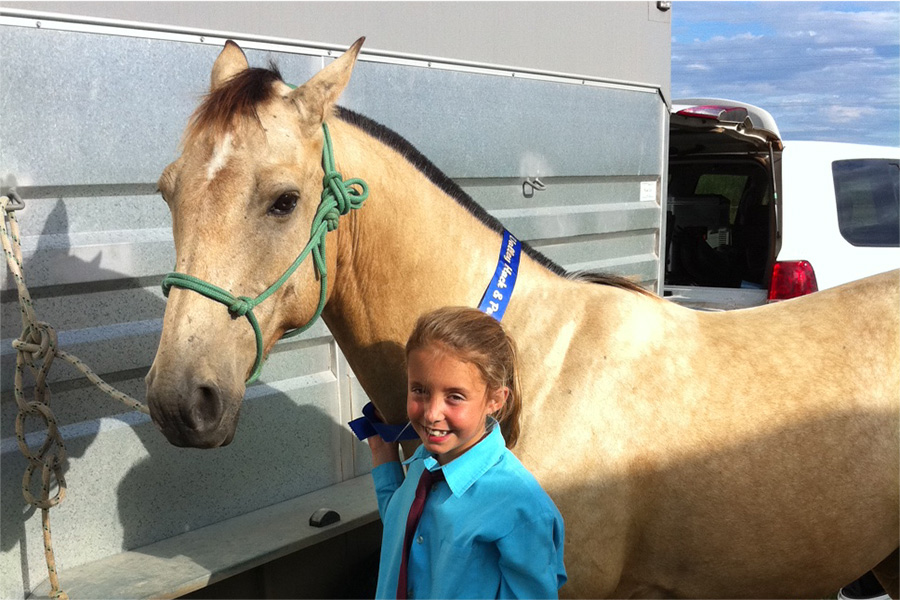 Pre-purchase examinations are all about finding the right horse for the rider!
