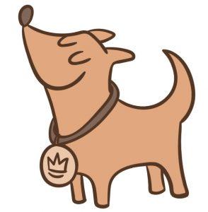 Puppy Preschool - Mackay